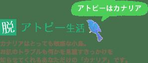脱アトピー生活 アトピーはカナリア カナリアはとっても敏感な小鳥。お肌のトラブルも何かを見直すきっかけを知らせてくれるあなただけの「カナリア」です。